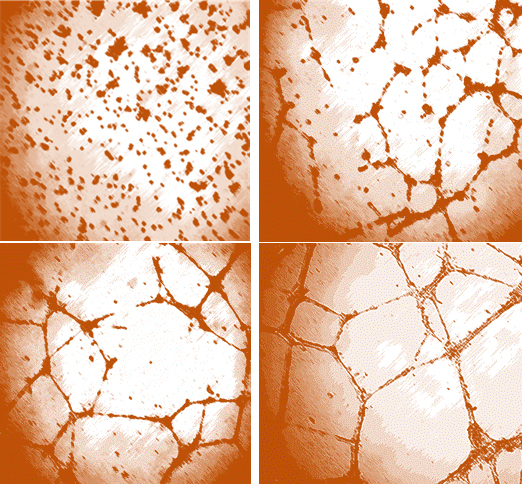 Unraveling the vasculature network around the tumor with aryl urea derivatives - Medicine Innovates
