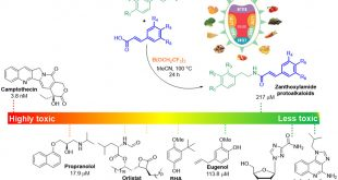 Zanthoxylamide protoalkaloids based on N-phenylethyl cinnamamides: a series of natural and synthetic safe umami taste enhancing components assessed in silico and in vivo toxicity assays in zebrafish embryos - Medicine Innovates