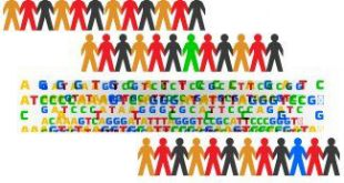 Genetic Variation Predict Success in Anxiety and Depression Therapy - Medicine Innovates