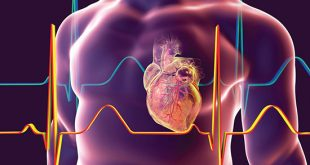 Modifying immune response can improve cardiac adult stem cell therapy - Medicine Innovates