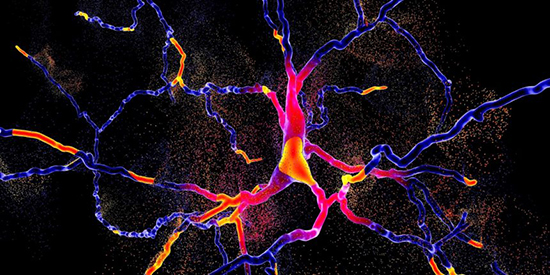 Reversing Parkinson's disease by substituting dead Neurons - Medicine Innovates