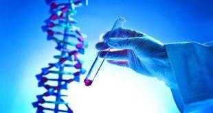 Noninvasive detection of brain cancers - Medicine Innovates