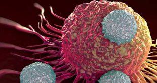 Reprogramming a more potent cytotoxic Human iPSC-Derived NK Cells - Medicine Innovates