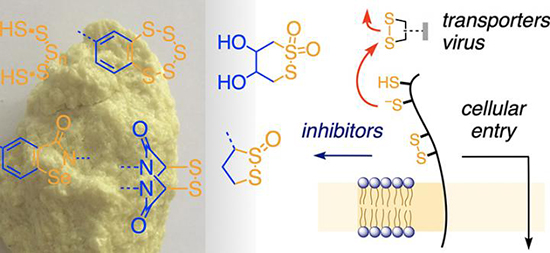Inhibitors of thiol-mediated uptake - Medicine Innovates