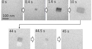 Development of a new method to study early stages of amyloid-β peptides oligomer - Medicine Innovates