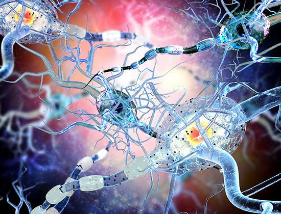 N-Acetylglucosamine: A new biomarker for severe Multiple Sclerosis - Medicine Innovates