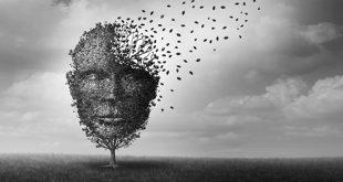 SVEP1: predict future dementia risk - Medicine Innovates